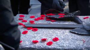 Poppies laid at Tomb of Unknown Soldier on Remembrance Day