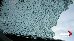 Transport Canada reveals number of complaints regarding shattered sunroofs on vehicles (01:13)