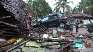 Tsunami that claimed 222 lives in Indonesia struck without warning