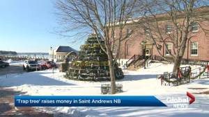 N.B. town creates a very East Coast Christmas tree in support of local food bank