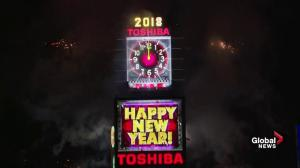 New Year's ball drops in Times Square in New York City