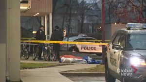 Toronto police investing suspected murder-suicide