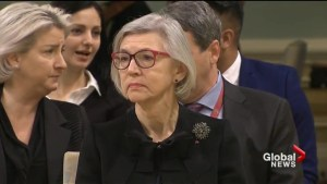 Former Chief Justice of Canada to review Plecas Report