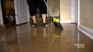 Toronto resident says basement a 'total loss' following flooding