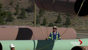 Alberta politicians react to NEB Trans Mountain recommendation