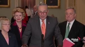 Schumer says 'slush fund' will be used by Trump for 'radical' immigration policies