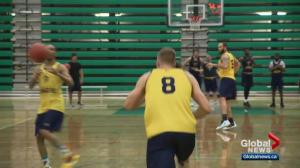 Edmonton Stingers prepare to take on Niagara River Lions
