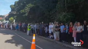New Zealand shooting: Residents form human chain around mosque so Muslims can pray in peace