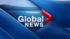 Global News at 5 Edmonton: April 11