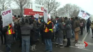 Classes cancelled at York University during strike