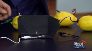 Get Sparked: When life gives you lemons, make a battery