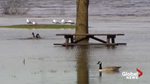Ottawa continues to cope with devastating spring floods