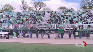 'Green and White Day' in Saskatoon
