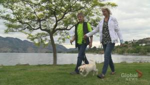 West Kelowna dog owner urges caution puppy eats marijuana at local park