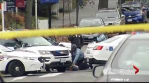 Fake news leads to pizzeria shooting in D.C.