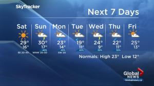 Edmonton weather forecast live from Folk Music Festival