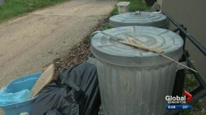 Edmonton works on new plan for waste collection