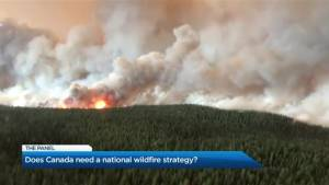 Does Canada need a national wildfire strategy?