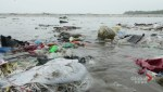 Canada joins international campaign to clean up oceans