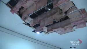Liberty Village woman describes flood damage to her building