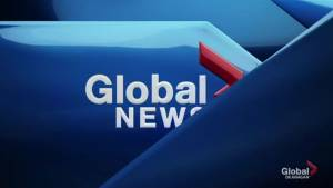 Global News at 5: Jun 20 Top Stories