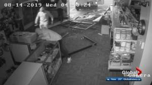 Smash-and-dash at southeast Edmonton computer store