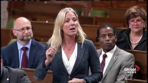 Liberals fire back over claims carbon tax shows pattern of dismissing 'legitimate concerns'