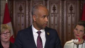 Immigration minister provides little detail on who will pay for additional medical costs