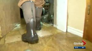 Flooding forces evacuations in Beiseker