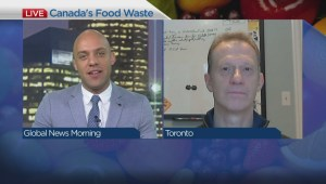 Canada wastes half the food it produces: report