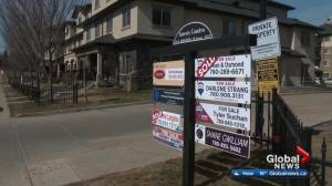Edmonton real estate market flattens out