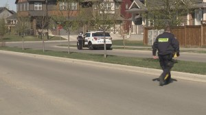 Police on scene in Airdrie, Alberta after shots fired in community