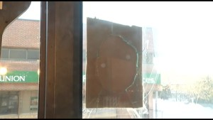 Businesses, residential buildings along Princess St. dealing with unexpected guests & damages