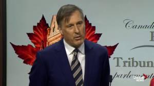 Maxime Bernier defends failure to condemn New Zealand tragedy
