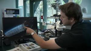 Rare tour of environmental 'CSI' lab in B.C.