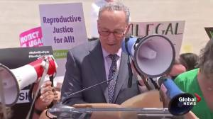 Chuck Shumer says Republicans are trying to repeal Roe v Wade