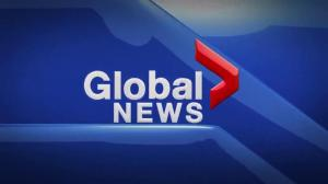 Global News at 5 Edmonton: Nov. 8