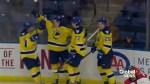 Lethbridge Hurricanes open road trip with 5-3 loss in Saskatoon