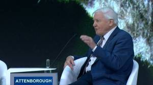 British naturalist David Attenborough expresses concern over ease ecosystems can be destroyed by man