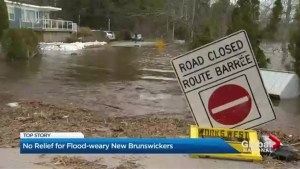 No relief for flood-weary New Brunswickers