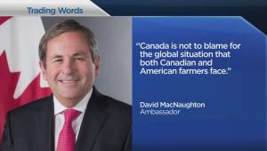 Trump calls out Canadian dairy industry
