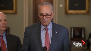 Senators Schumer, Rubio and Warner react to Trump's backtracking on Russia comments