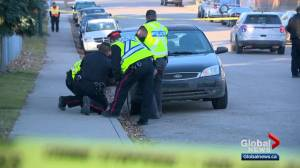 3-year-old boy dies after being struck by vehicle in northeast Calgary