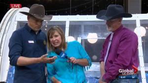 Jordan Witzel Wears Daisy Dukes Watch News Videos Online
