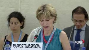 Right to life at core of international human rights protection: U.N. Rapporteur