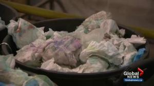 Winnipeggers try to 'recycle' 5,500 used, dirty diapers every week