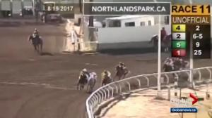 Alberta court hears details of fight over disqualified horse in Canadian Derby
