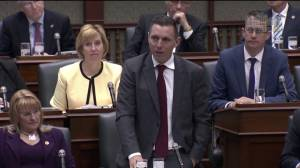 Patrick Brown says Wynne 'failing public safety' following Global News investigation into Ont. probation system