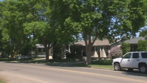Lethbridge City Council creates task force to address housing needs