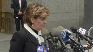 Gloria Allred alleges there are 'a number of' victims in Jeffrey Epstein case